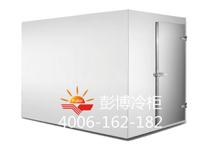 K001款低温保鲜冷库 PC-20