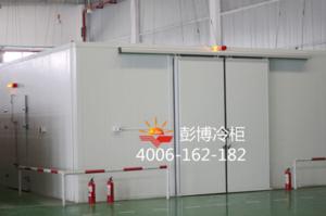 K002款医用冷库低温冷藏库 PC-30A